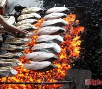 Cá thu nướng Cửa Lò – đặc sản khó cưỡng